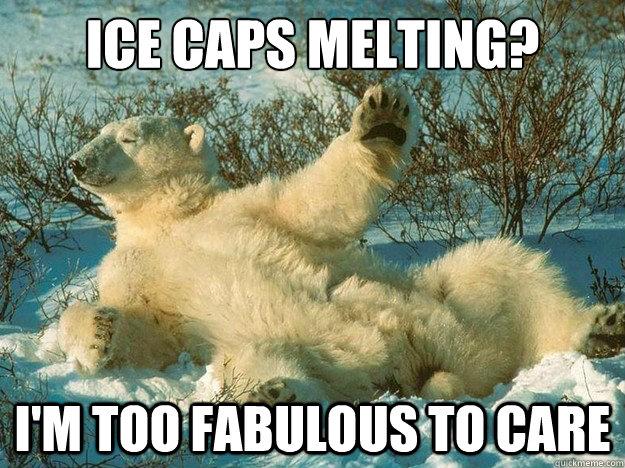fabulous polar bear meme